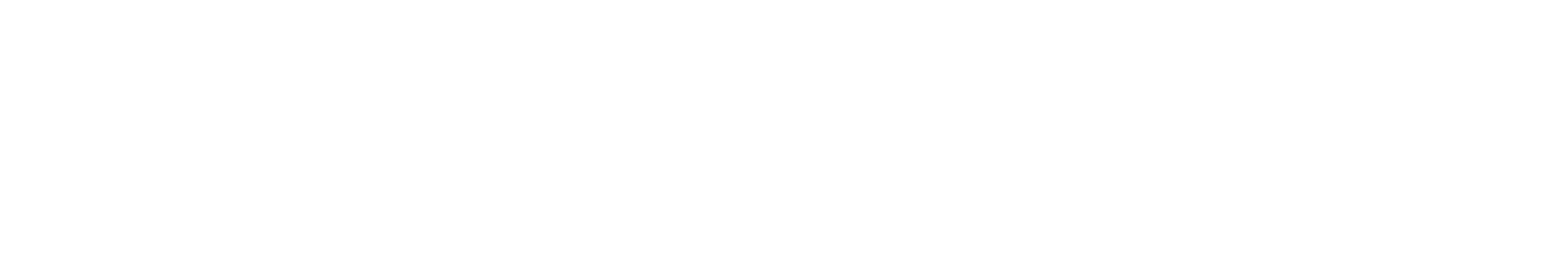 auxmoney Logo PNG Print RBG Weiss