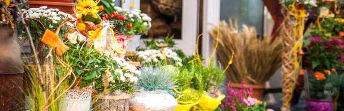 Blumenladen Eröffnen Gründungsratgeber